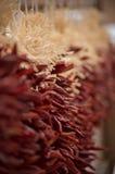 Peperoni rossi del Cile Fotografia Stock Libera da Diritti