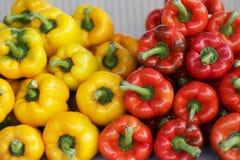 Peperoni rossi e gialli Fotografia Stock