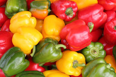 Peperoni rossi, gialli e verdi Immagine Stock