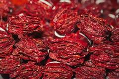Peperoni secchi 2 Fotografie Stock Libere da Diritti