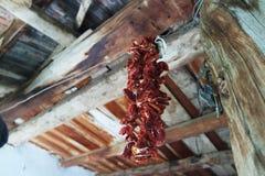 Peperoni secchi che appendono sul soffitto immagine stock