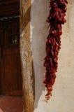 Peperoni secchi contro la porta Immagini Stock