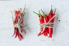 Peperoni secchi e freschi fotografie stock