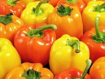 Peperoni variopinti Fotografia Stock Libera da Diritti