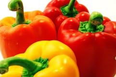 Peperoni variopinti Immagini Stock Libere da Diritti