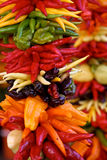 Peperoni variopinti su visualizzazione Fotografie Stock