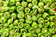 Peperoni verdi al mercato Fotografia Stock
