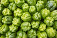 Peperoni verdi dolci come bacground Immagini Stock