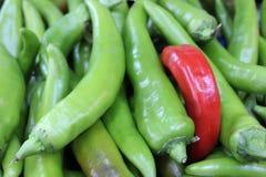 Peperoni verdi e roventi maturi Fotografia Stock