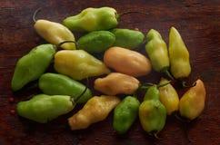 Peperoni verdi organici Fotografie Stock