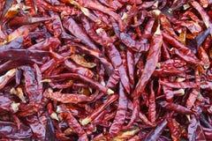 Pepers asciutti del peperoncino rosso Fotografia Stock