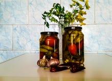 Pepinillos conservados en vinagre con los tomates fotos de archivo