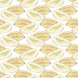 Pepino瓜 fruits pattern seamless 背景被画的现有量 也corel凹道例证向量 库存图片