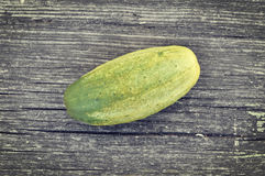 pepino Foto de Stock Royalty Free