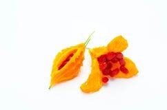Pepino amargo con natural Imagen de archivo