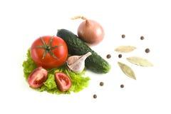 Pepino com tomates em um fundo branco Vegetais em um fundo branco Vegetais coloridos frescos em um backgroun branco Imagem de Stock