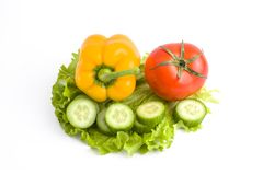 Pepino com tomates em um fundo branco Vegetais em um fundo branco Vegetais coloridos frescos em um backgroun branco Imagens de Stock Royalty Free
