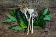 Pepino e alho nas hortaliças Imagens de Stock Royalty Free