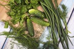 Pepino, erva-doce e salsa Fotos de Stock Royalty Free
