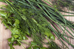 Pepino, erva-doce e salsa Imagem de Stock Royalty Free