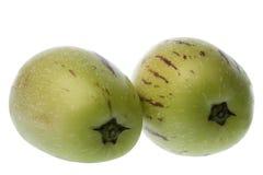 Pepino Geïsoleerde Dulce (de Peren van de Meloen) Stock Foto's