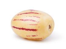 Pepino melon Royaltyfri Foto