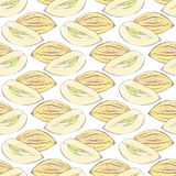 Pepino melon. Seamless pattern with fruits. Hand-drawn background. Vector illustration. Stock Image