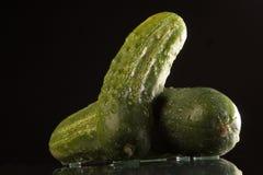Pepino mojado Imagen de archivo libre de regalías