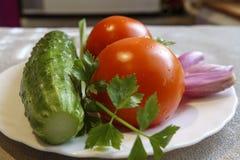 Pepino, tomate e cebola frescos em uma placa Imagens de Stock Royalty Free