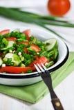Pepino, tomates e salada da cebola verde Imagem de Stock Royalty Free