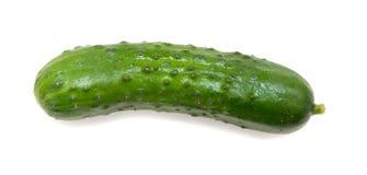 Pepino verde aislado en el fondo blanco Imagen de archivo
