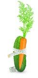 Pepino y zanahoria con el metro Fotografía de archivo