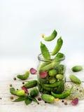 Pepinos con las hierbas y las especias para conservar en vinagre en el tarro de cristal con los ingredientes del vuelo Foto de archivo libre de regalías