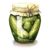 Pepinos conservados en vinagre, conservados hechos en casa en el tarro de cristal aislado, ejemplo de la acuarela Foto de archivo libre de regalías