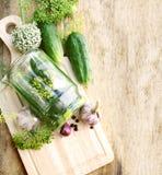 Pepinos de conserva en vinagre Fotografía de archivo libre de regalías