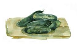 Pepinos de la acuarela Imagen de archivo libre de regalías