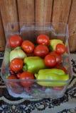 Pepinos de las pimientas de los tomates del stilllife de las verduras Imágenes de archivo libres de regalías