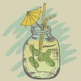 Pepinos del jugo de la salmuera en un banco Imagen de archivo libre de regalías