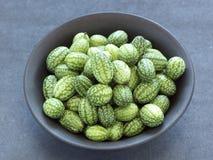 Pepinos do scabra de Melothria mini Fotos de Stock Royalty Free