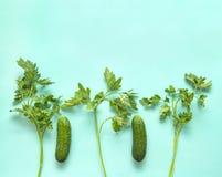 Pepinos, grupo da salsa, no fundo verde, verdes, frescos Fotos de Stock Royalty Free