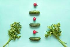 Pepinos, grupo da salsa, rabanete vermelho em um fundo verde, f Imagem de Stock