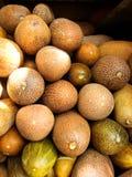 Pepinos maduros Foto de Stock Royalty Free