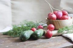 Pepinos, rabanetes e ervas Fotos de Stock