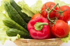 Pepinos, tomates, pimentas, alface na cesta Imagem de Stock Royalty Free