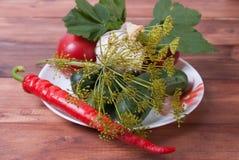 Pepinos, tomates, pimientas, ajo, las hojas de la pasa roja Fotografía de archivo libre de regalías