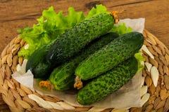 Pepinos verdes Imagen de archivo