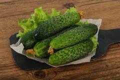 Pepinos verdes Fotografía de archivo libre de regalías