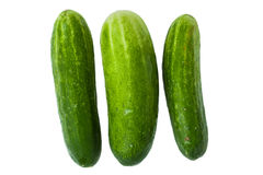 Pepinos verdes Imagens de Stock