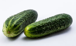 pepinos verdes em um fundo branco Imagem de Stock Royalty Free