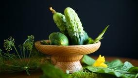 Pepinos verdes frescos metrajes